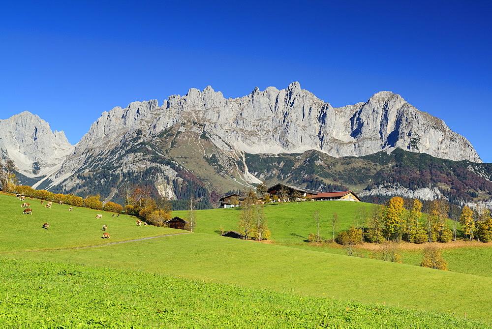 Wilder Kaiser from south with Karlspitzen, Regalmspitze, Ackerlspitze and Maukspitze, Wilder Kaiser, Kaiser range, Tyrol, Austria