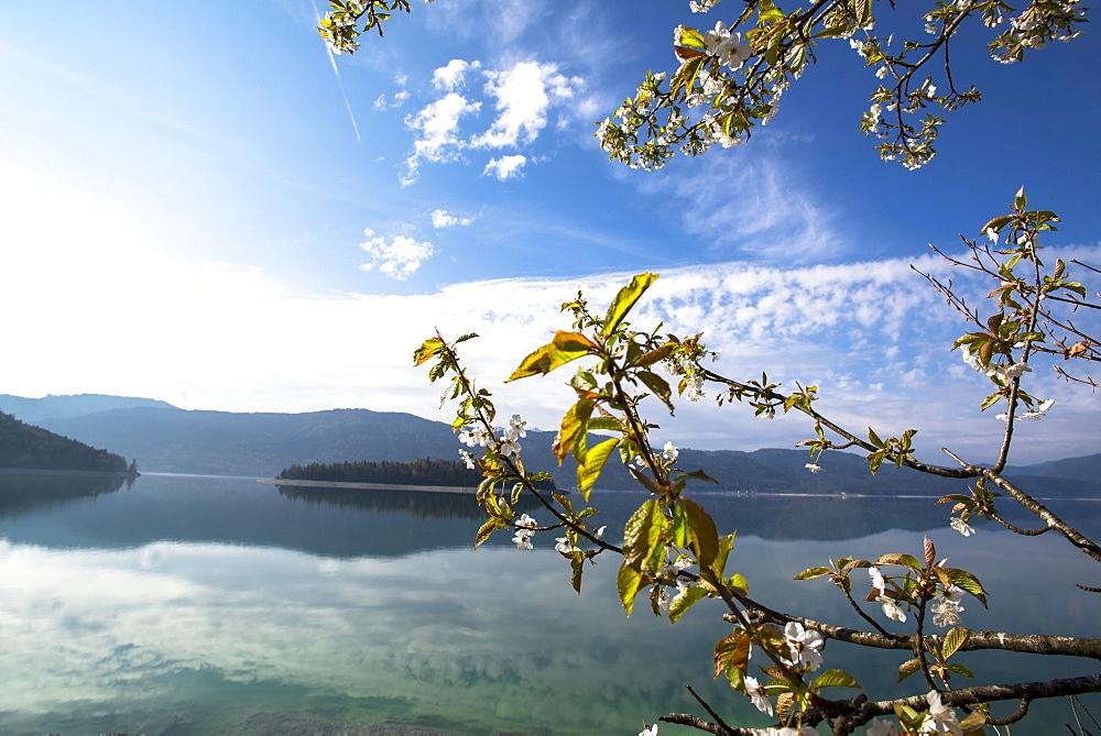 Views of lake Walchensee and Sassau island, Lake Walchensee, Alps, Upper Bavaria, Bavaria, Germany