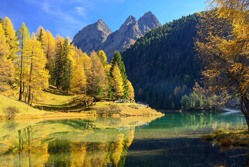 Golden larches at lake Palpuogna (1918 m) with Piz da la Blais (2930 m), Grisons, Switzerland