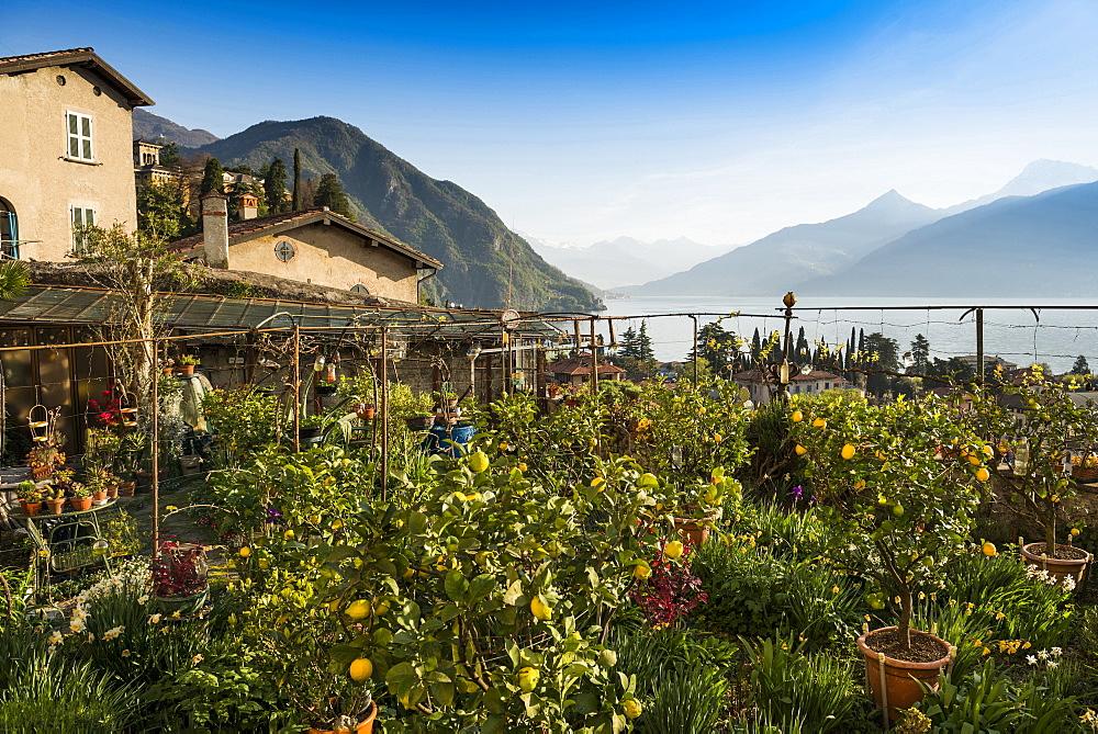 Menaggio at Lake Como, Lago di Como, Province of Como, Lombardy, Italy