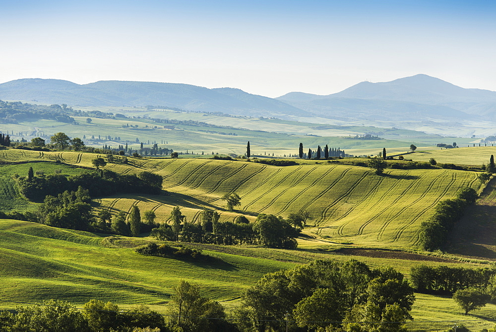 landscape near Pienza, Val d`Orcia, province of Siena, Tuscany, Italy, UNESCO World Heritage