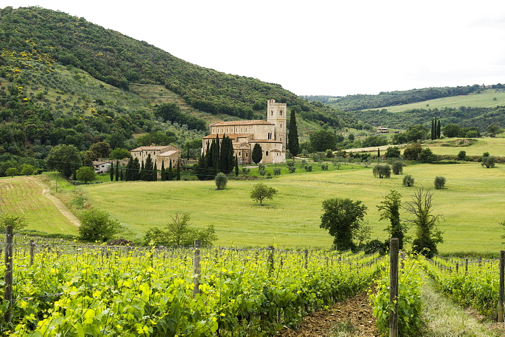Abbey of Sant`Antimo near Montalcino, Val d`Orcia, province of Siena, Tuscany, Italy, UNESCO World Heritage