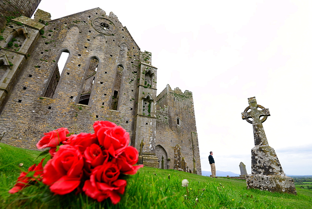 At the Rock of Cashel, Cashel, County Tipperary, Ireland