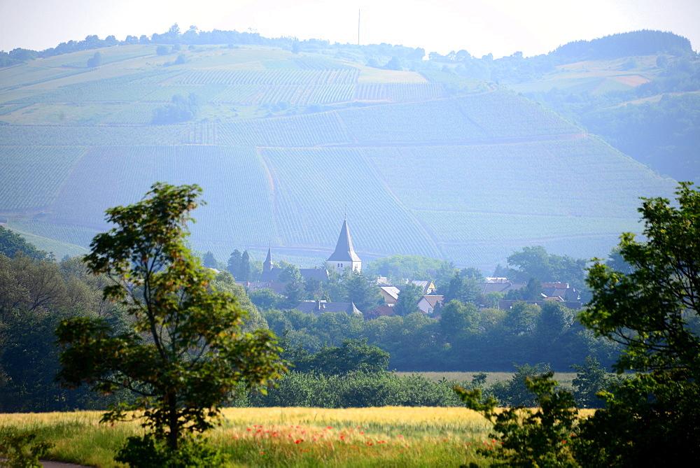 Landscape near Kanzem on the river Saar, Rhineland-Palatinate, Germany
