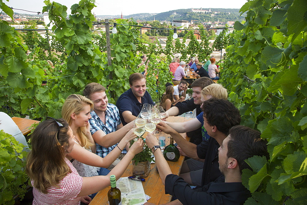 People sitting amidst vines at a festival at Weingut am Stein winery, Wuerzburg, Franconia, Bavaria, Germany