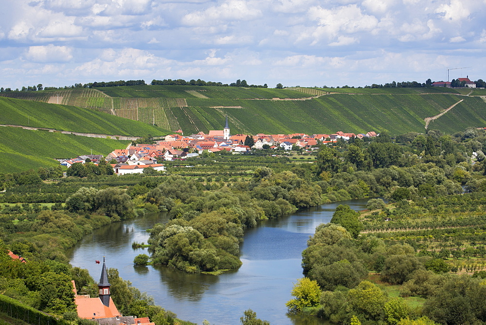 View from Escherndorfer Fuerstenberg vineyard across on Mainschleife of Main river with Koehler and Escherndorf in distance, nea
