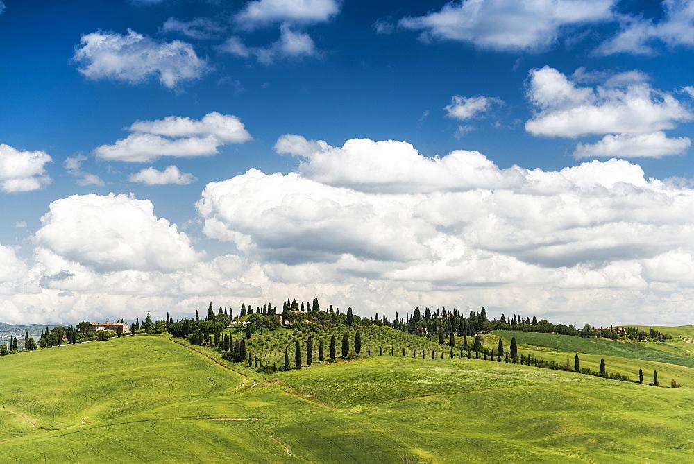 Landscape near Crete Senesi, near Siena, Tuscany, Italy