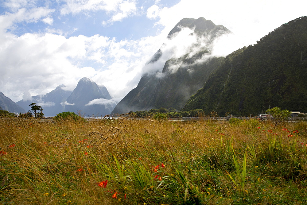 Bright spot in Milford Sound, cloud-shrouded mountains, Milford Sound, Fiordland National Park, South Island, New Zealand