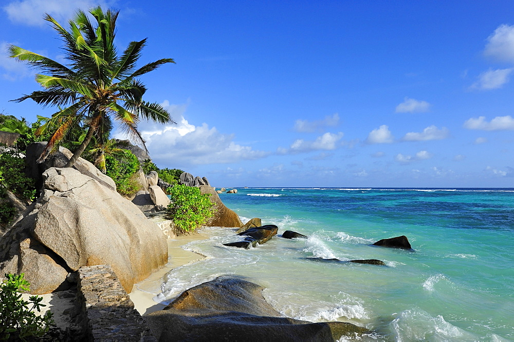 Rocks and palm tree at beach Anse Source d'Argent, Union Estate national park, La Digue Island, the Seychelles, Indian Ocean