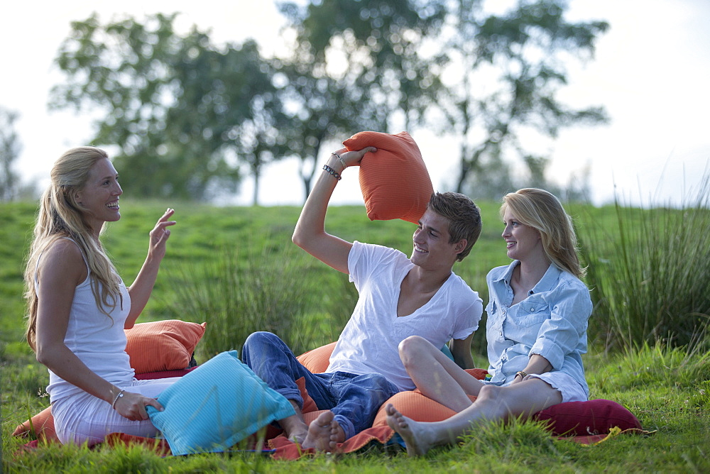 Young people having a picnic in a green field, Krautinsel, Chiemsee, Bavaria, Germany