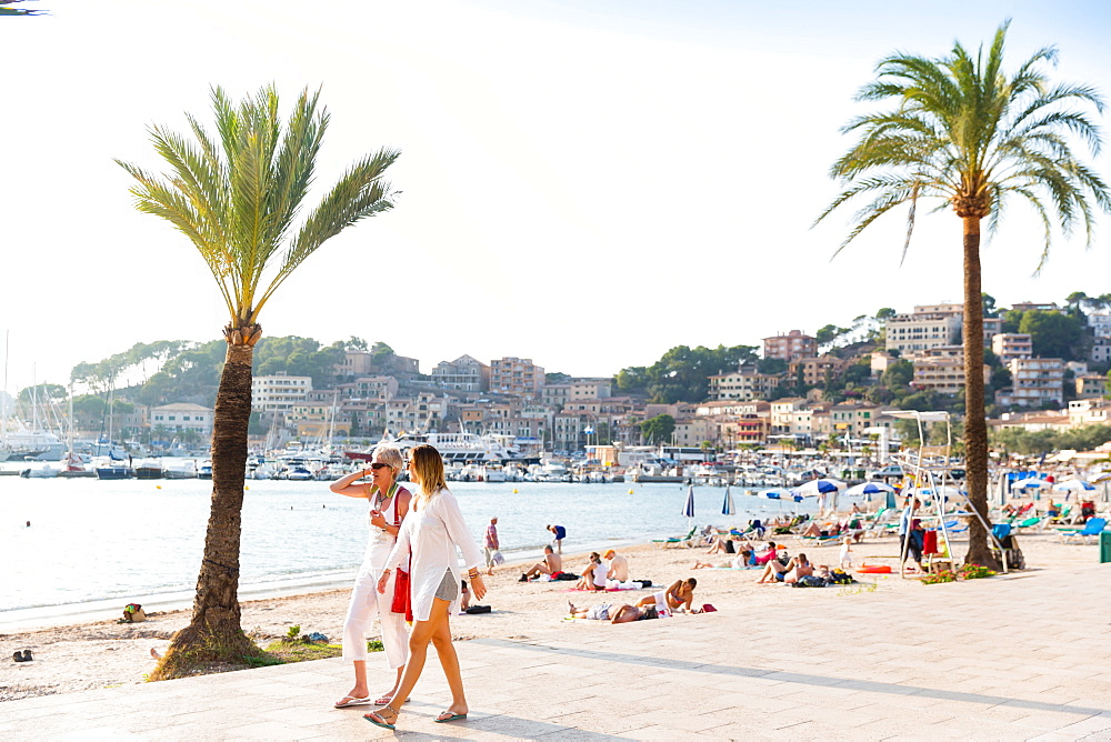 beach seafront with palm trees, Mediterranean Sea, Port de Soller, Serra de Tramuntana, Majorca, Balearic Islands, Spain, Europe