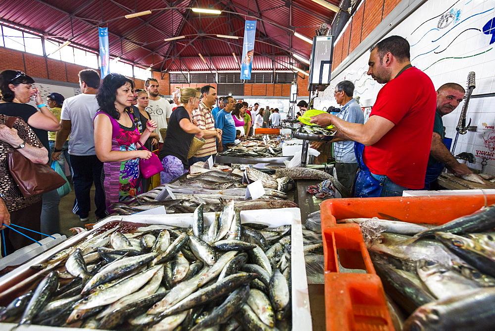 Fish market, market hall, Olhao, Algarve, Portugal