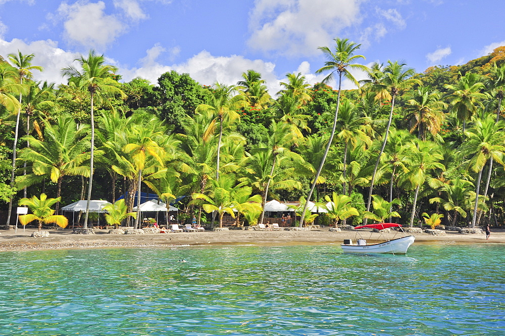 Palm trees, bar, parasols and boat at Anse Mamin beach, Anse Chastanet, sea, Soufriere, St. Lucia, Saint Lucia, Lesser Antilles, West Indies, Windward Islands, Antilles, Caribbean, Central America