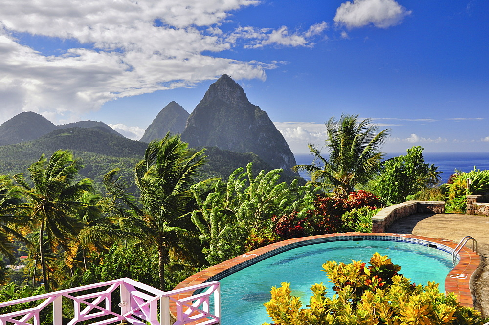 swimming pool of La Haut Plantation hotel with view to palm trees and volcano mountains The Pitons with Gros and Petit Piton, UNESCO world heritage, Soufriere, St. Lucia, Saint Lucia, Lesser Antilles, West Indies, Windward Islands, Antilles, Caribbean, Central America