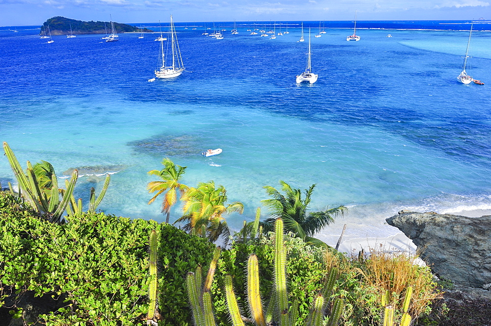 view from Jamesby island to sailing ships on the sea, beach and Baradel Island, Horseshoe Reef, Tobago Cays, St. Vincent, Saint Vincent and the Grenadines, Lesser Antilles, West Indies, Windward Islands, Antilles, Caribbean, Central America