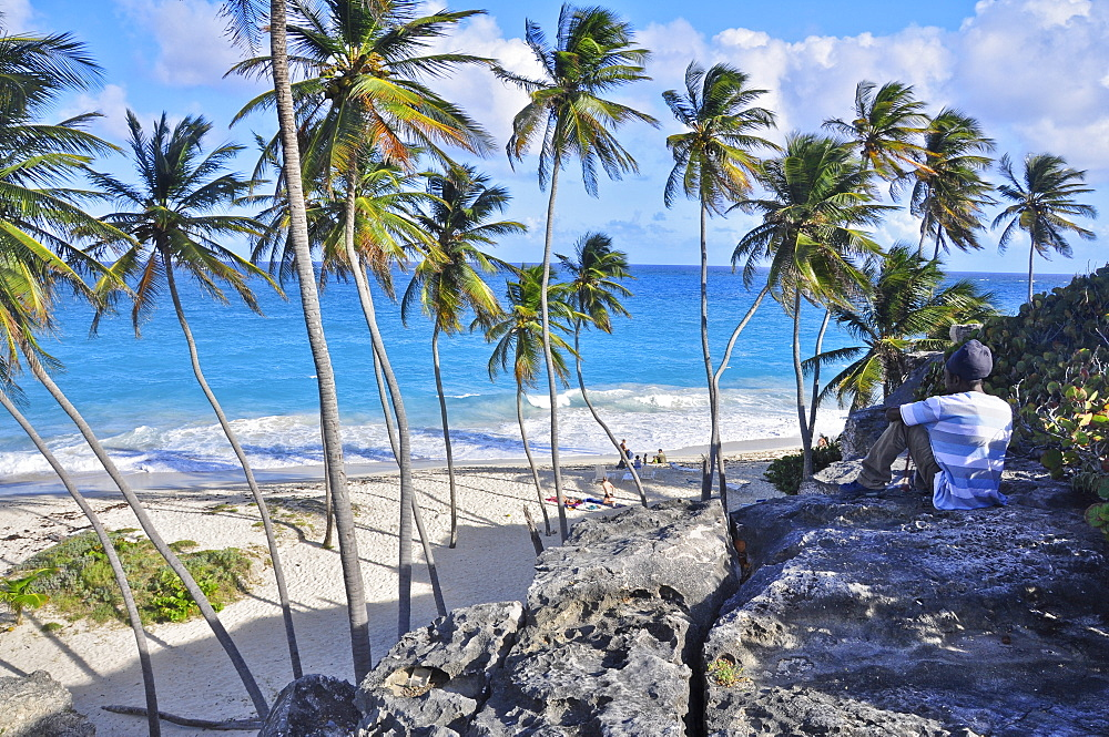 young local man sitting on a rock at a tropical beach with palm trees, sea, Bottom Bay, south coast, Barbados, Lesser Antilles, West Indies, Windward Islands, Antilles, Caribbean, Central America