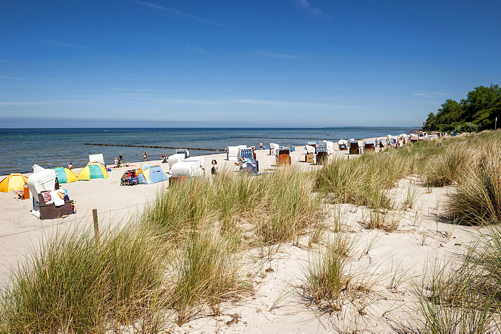 Beach chairs on the beach, seaside, Poel Island, Wismar, Baltic Sea, Germany, Europe, summer - 1113-102394