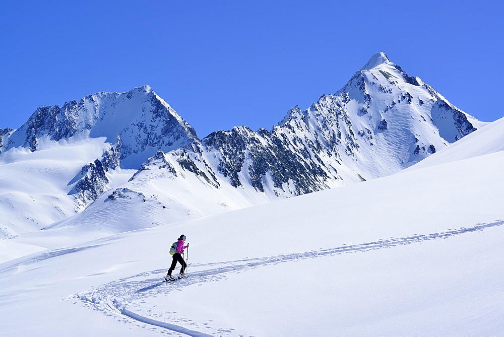 Female back-country skier ascending to Eiskoegele, Obergurgl, Oetztal Alps, Tyrol, Austria