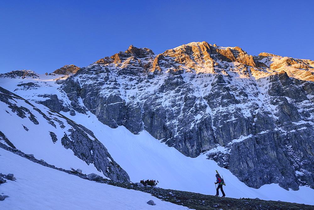 Female back-country skier ascending to Birkkarspitze at dawn, Karwendel range, Tyrol, Austria
