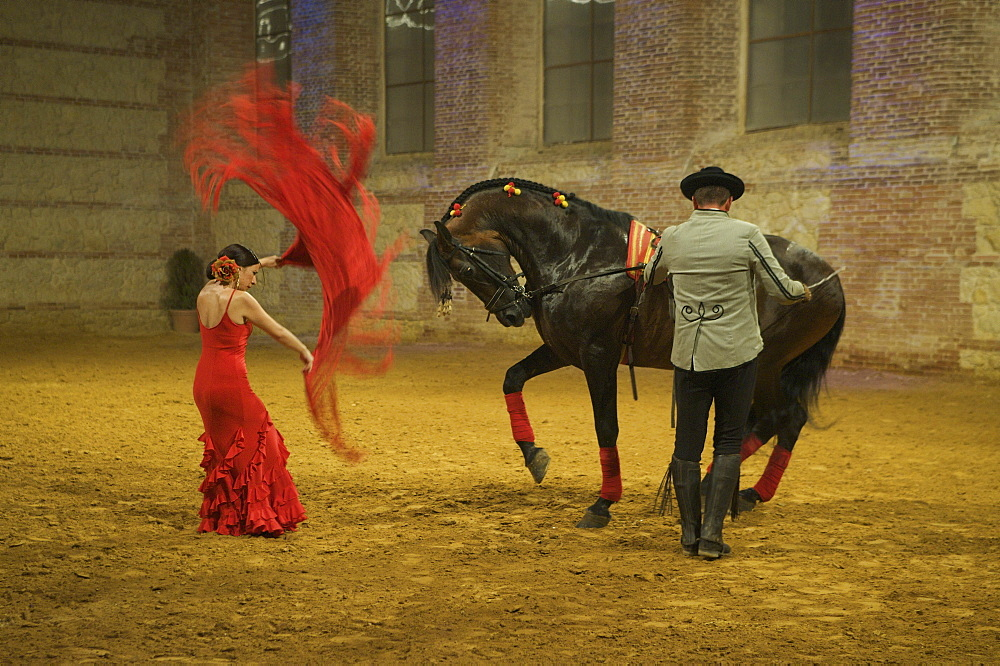 Flamenco show with female dancer and horse at Cordoba Ecuestre in the Calle Caballerizas Reales in Cordoba, Andalusia, Spain