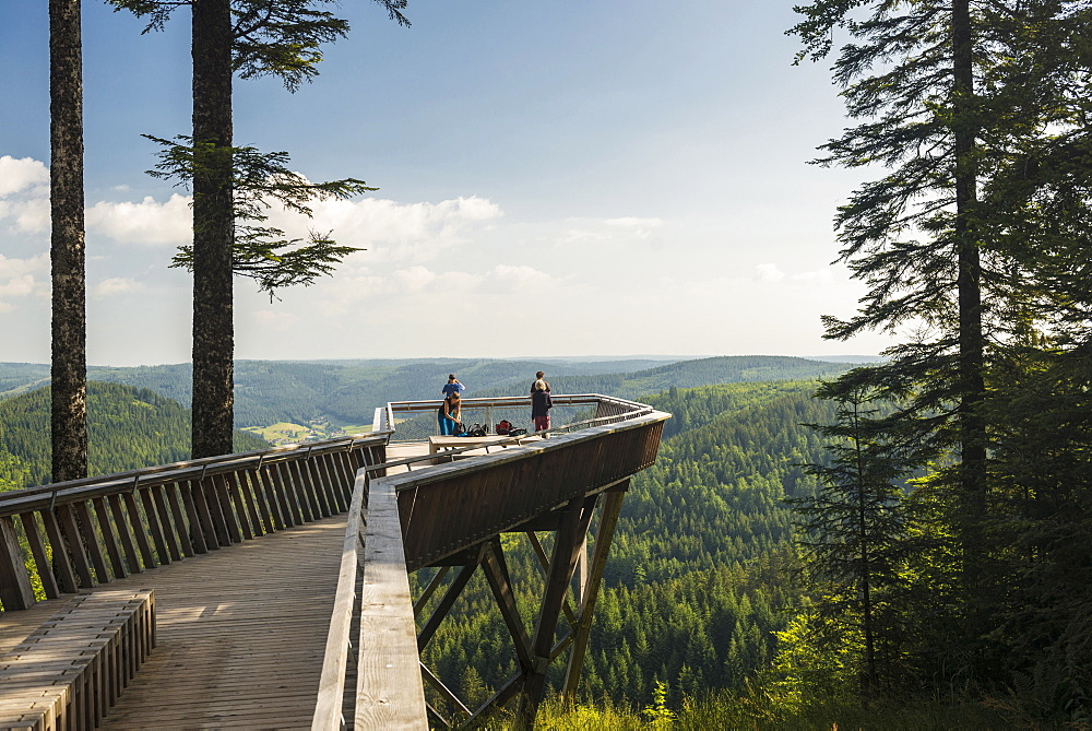 viewpoint, Buhlbachsee, near Baiersbronn, Black Forest National Park, Black Forest, Baden-Wuerttemberg, Germany