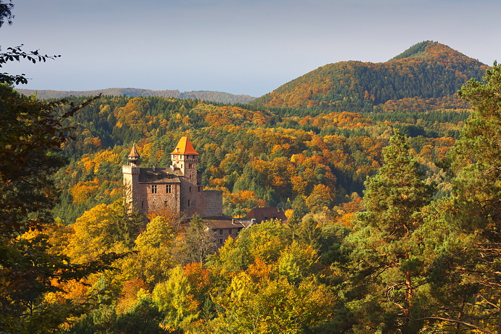 Berwartstein castle, near Erlenbach, Dahner Felsenland, Palatinate Forest nature park, Rhineland-Palatinate, Germany