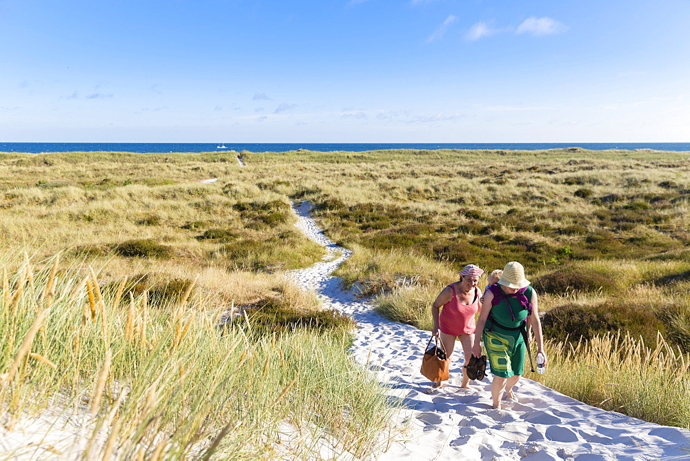 Dream beach and dunes of Dueodde, sandy beach, Summer, Baltic sea, Bornholm, Dueodde, Denmark, Europe