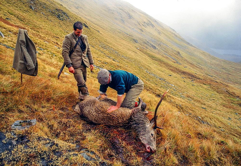 Hunter with wild game, Scotland, UK, Europe