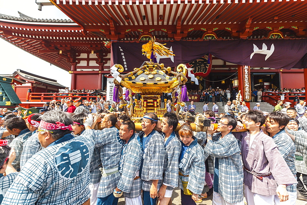 Japanese wearing yukata carrying portable shrine during Sanja Festival in front of Senso-ji Temple, Asakusa, Tokyo, Japan