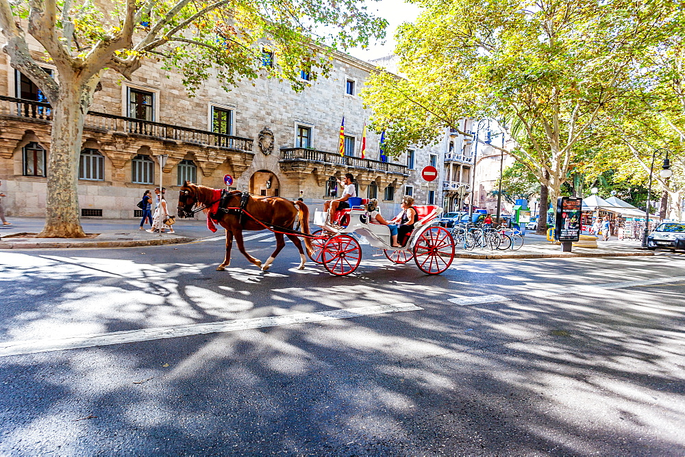 Horse carriage in the old town of Palma, historic city centre, Ciutat Antiga, Palma de Mallorca, Majorca, Balearic Islands, Mediterranean Sea, Spain, Europe