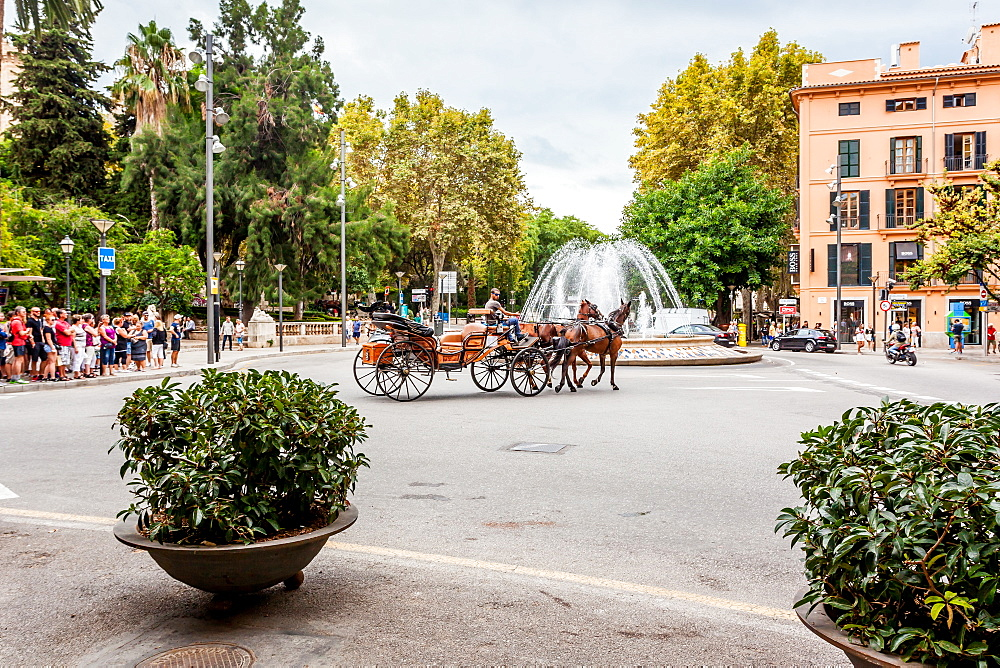 Horse carriages next to parc de Almudaina, placa de la Reina, historic city centre, Ciutat Antiga, Palma de Mallorca, Majorca, Balearic Islands, Mediterranean Sea, Spain, Europe