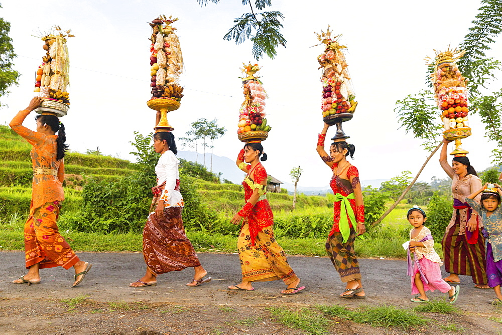 Women carrying offerings on their heads, Odalan temple festival, Gunung Agung in background, Iseh, Sidemen, Karangasem, Bali, Indonesia
