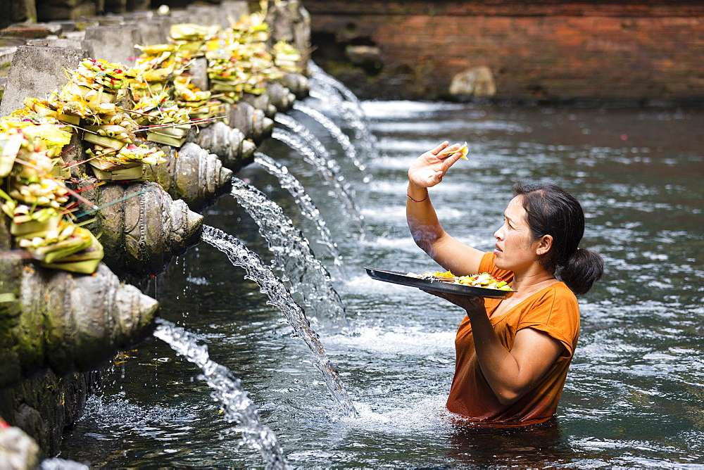 Balinese woman giving offering, spring sanctuary Pura Tirta Empul, Tampaksiring, Bali, Indonesia - 1113-102952