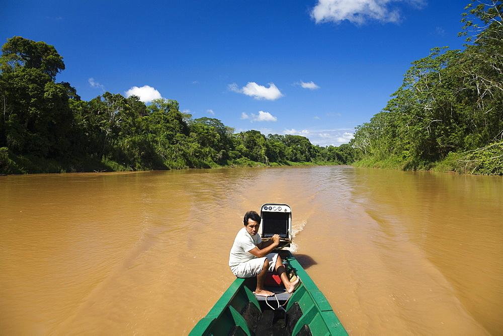 Rainforest at Tambopata river, Tambopata National Reserve, Peru, South America