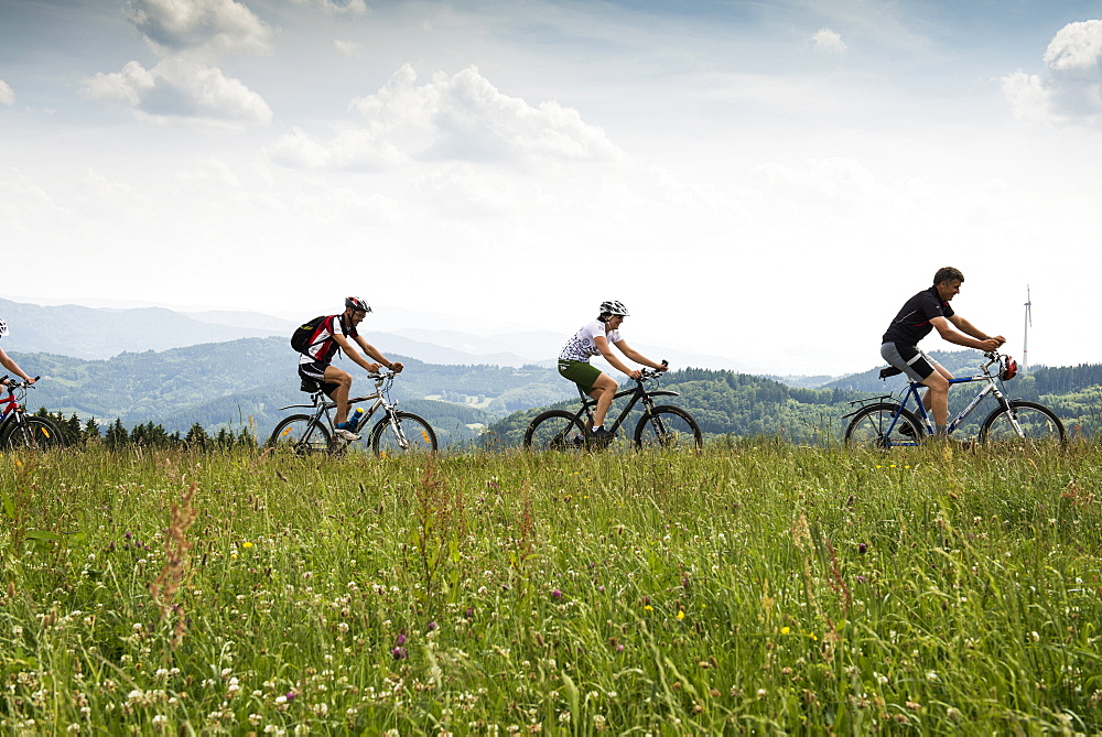 Mountain bikers near Freiamt, north of Freiburg im Breisgau, Black Forest, Baden-Wuerttemberg, Germany