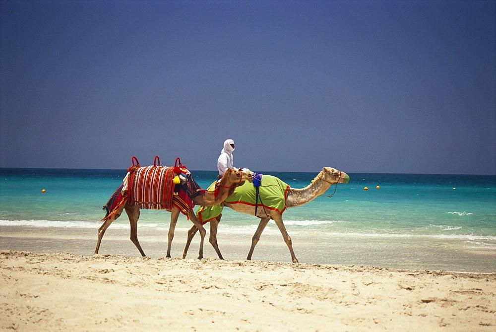 A local man riding a camel on the beach, Jumeirah Beach, Dubai, United Arab Emirates - 1113-103521