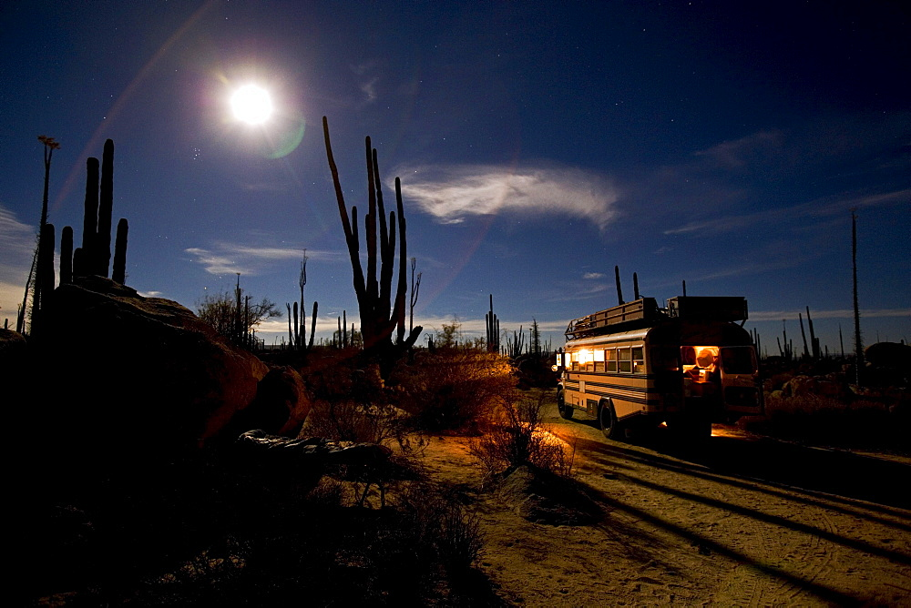 An American Schoolbus parked at night in the desert full of cactuses, fullmoon and starry sky, Catavina, Baja California Norte, Mexico