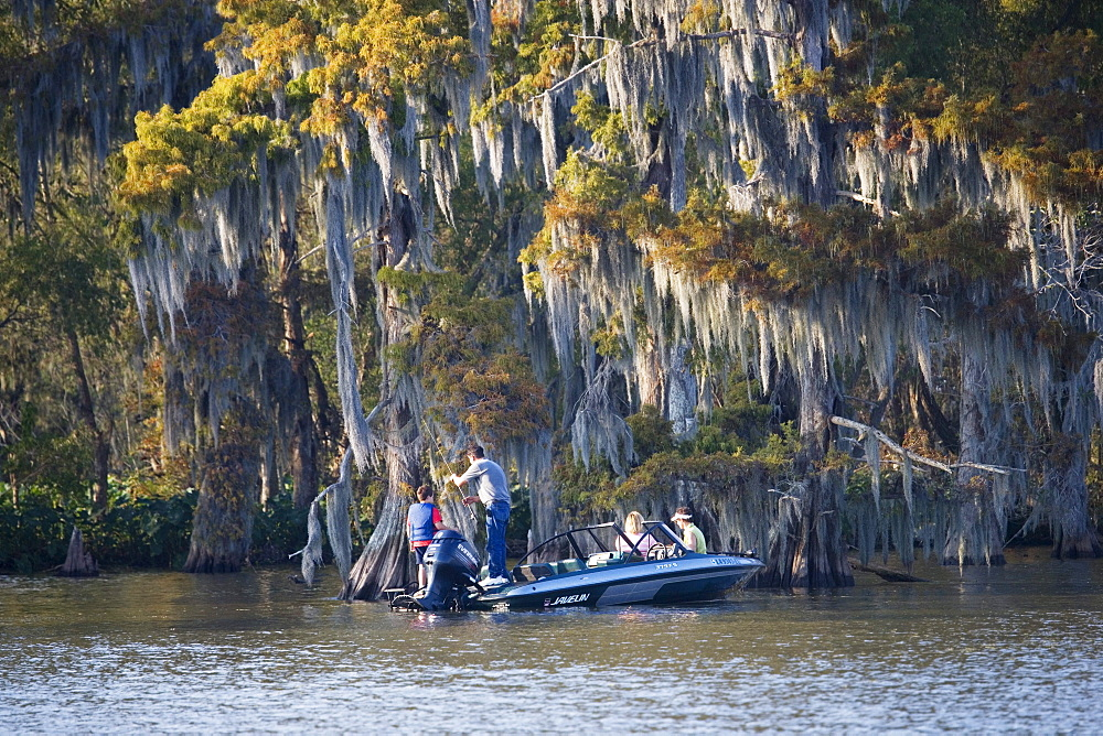 Men fishing close to a cedar tree near Attakapas Landing on Lake Verret, near Pierre Part, Louisiana, USA