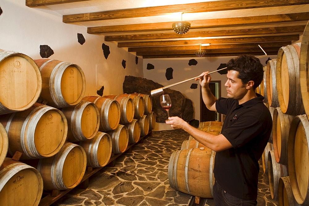 Oak barrels and oenologist in the wine cellar Bodega La Geria, La Geria, Lanzarote, Canary Islands, Spain, Europe