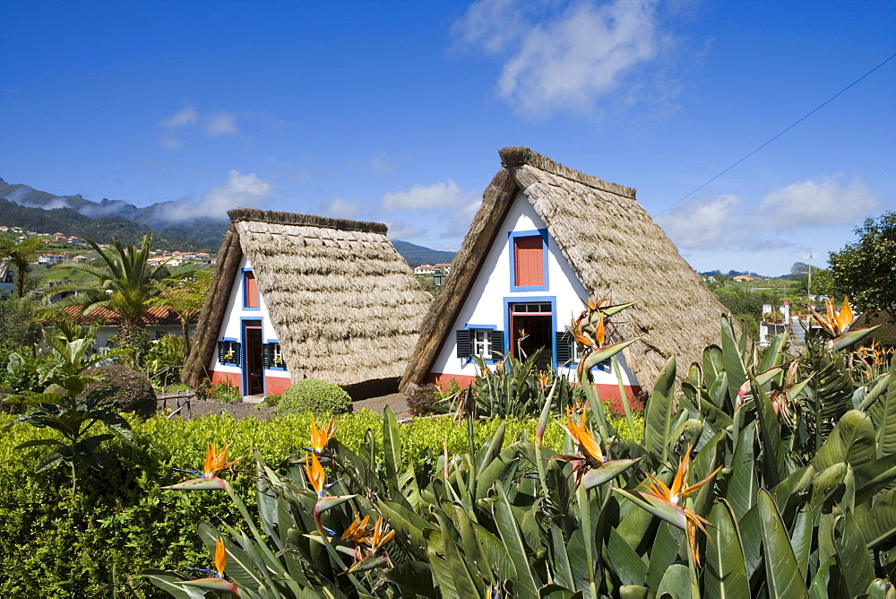 Traditional A-framed Palheiro Houses, Santana, Madeira, Portugal