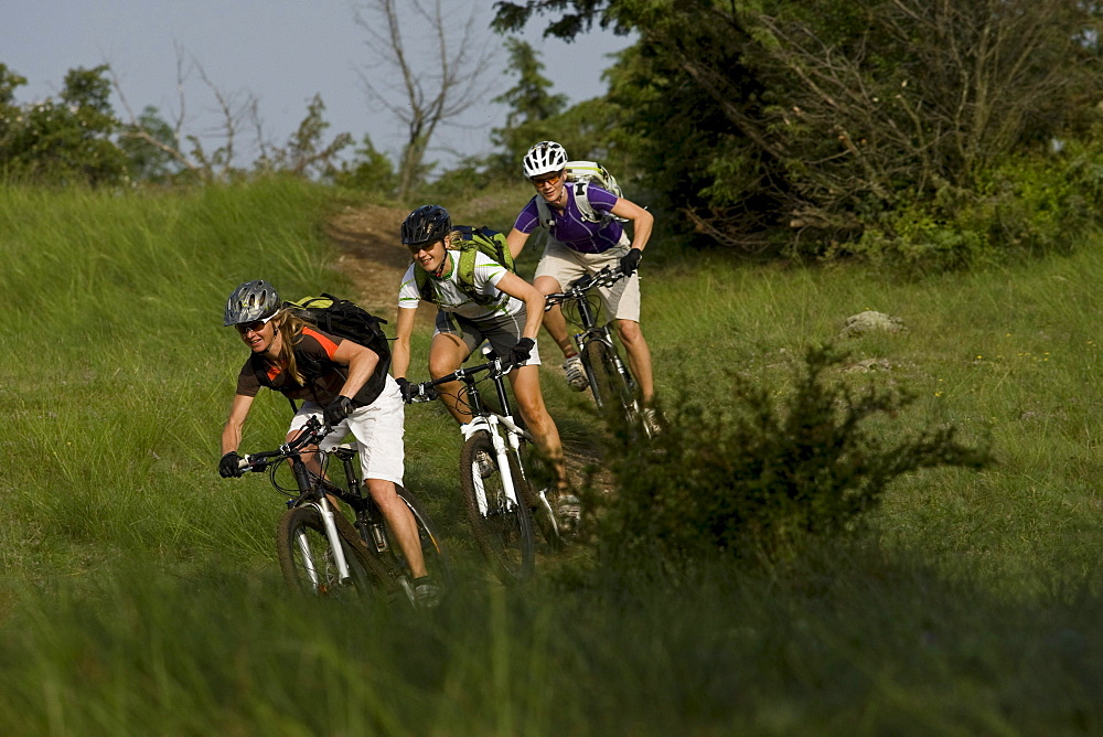 Three women mountain biking through grass, Latsch, Trentino-Alto Adige/South Tyrol, Italy
