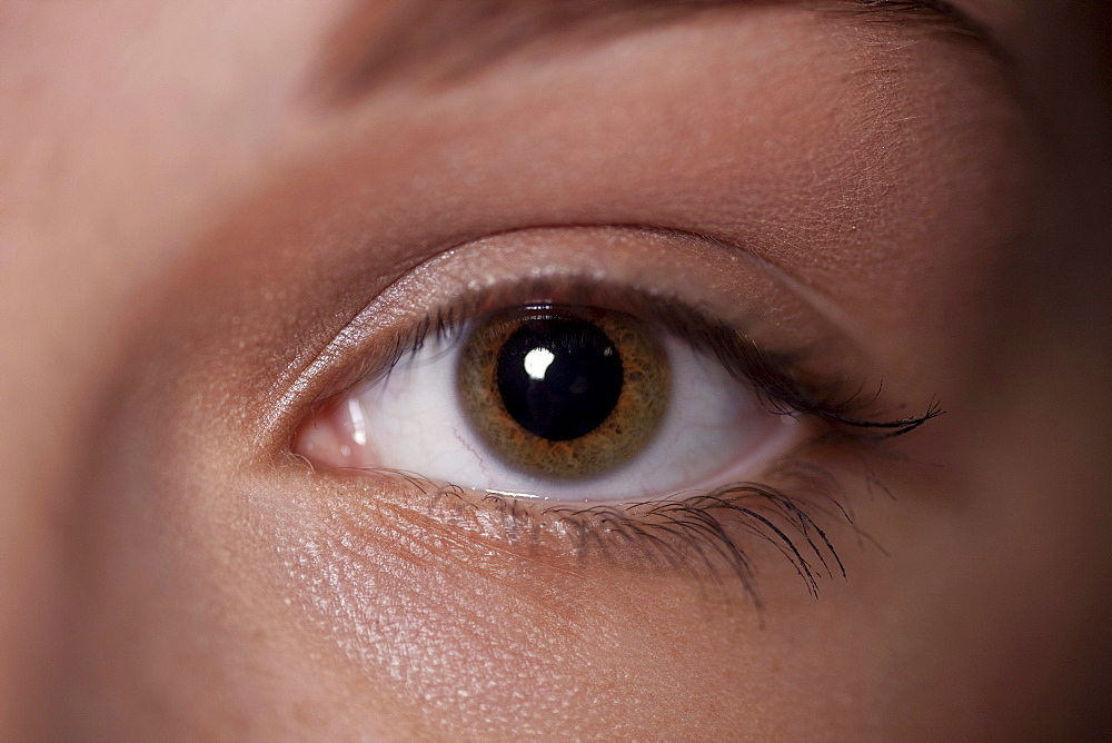 eye of a woman, close up