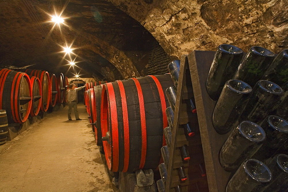 barrels with sparkling wine, champagne, storage, in cellar, Schloss Landestrost, Neustadt am Ruebenberge, Lower Saxony, Germany