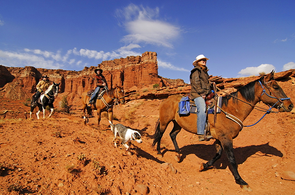 Horse riding, Torrey, Capitol Reef National Park, Utah, USA