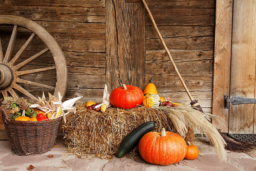Autumn decoration, farm near Wolfach, Baden-Wurttemberg, Germany - 1113-17349