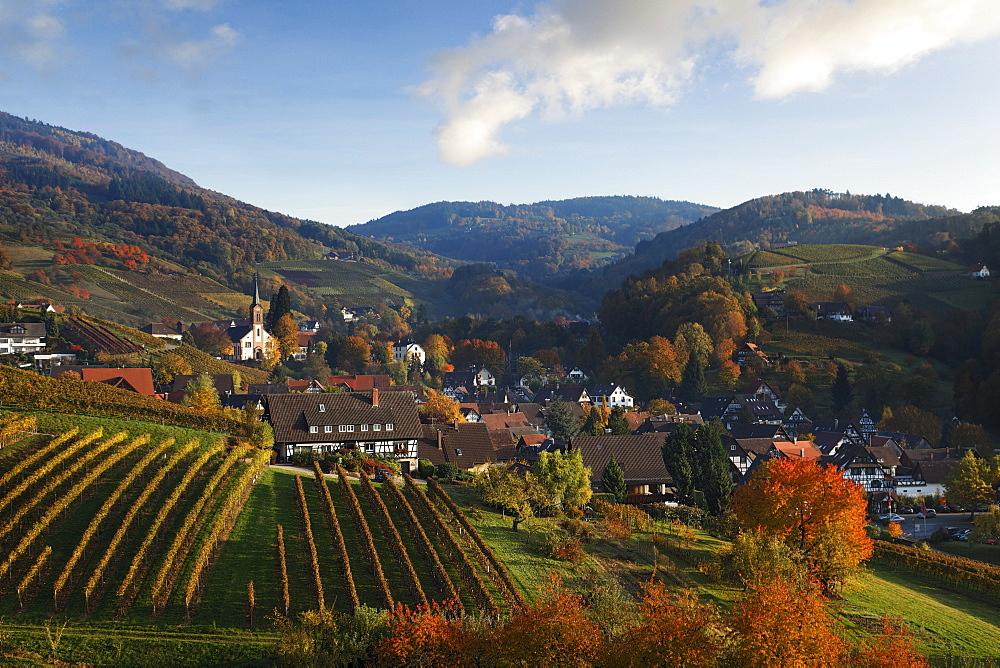 View over Sasbachwalden in autumn, Sasbachwalden, Baden-Wurttemberg, Germany