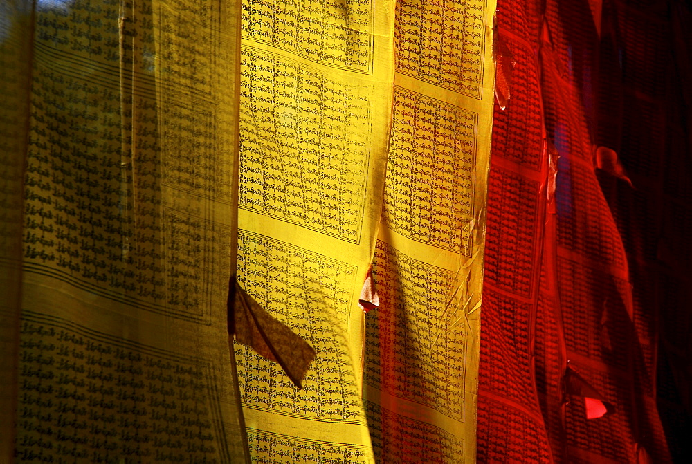 Prayer flags at Pemayangtse monastery, Sikkim, Himalaya, Northern India, Asia