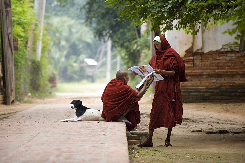 Two young buddhistic monks with a dog reading newspaper in Amarapura near Mandalay, Myanmar, Burma