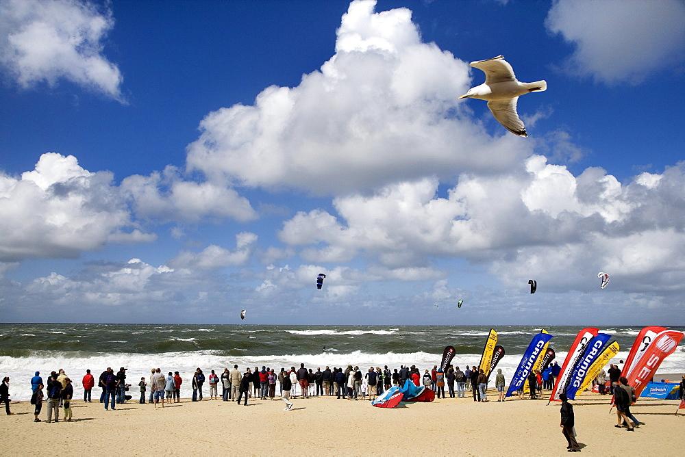 Kite-Surf Trophy, Westerland, North Sea, Sylt Island, North Frisian Islands, Schleswig-Holstein, Germany