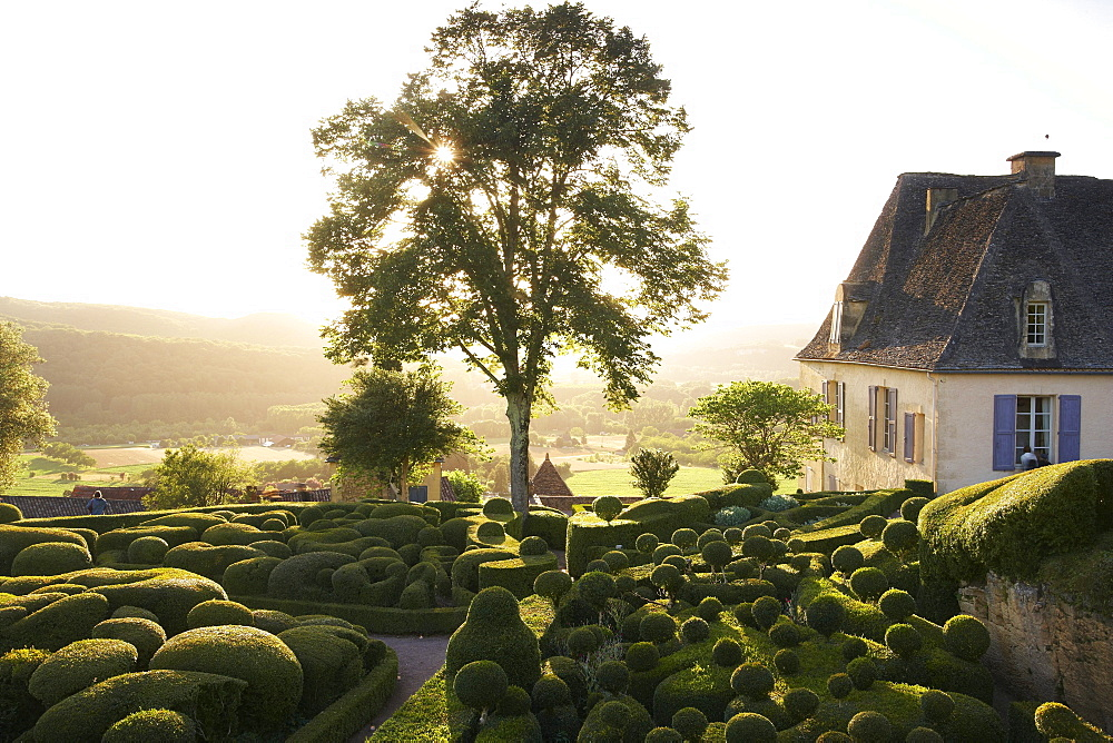 Les Jardins de Marqueyssac at sunset, near Beynac, The wy of St. James, Road to Santiago, Chemins de Saint-Jacques, Via Lemovicensis, Beynac, Dept. Dordogne, Région Aquitaine, France, Europe